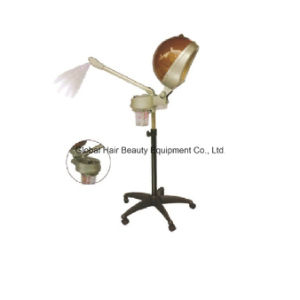 2 in 1 Hair and Face Steamer (HQ-1008) pictures & photos