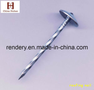 Roofing Nails EPDM Washer Umbrella Head Twist/Smooth Shank pictures & photos