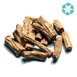 Codonopsis Pilosula Extract / Radix Codonopsis Extract / Tangshen Extract pictures & photos