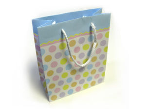 Paper Bag / Paper Shopping Bag / Gift Bag (PB-002) pictures & photos