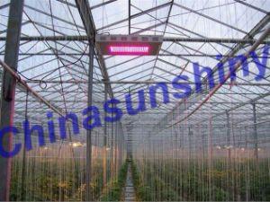 Grow Light CSS01