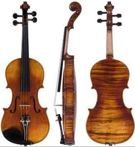Violin (FP04)