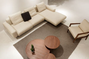 Elegant Beige Leather L Shape Sofa with Steel Legs (LS-012) pictures & photos