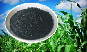 Soluble Flake Organic Fertilizer Humic Acid pictures & photos