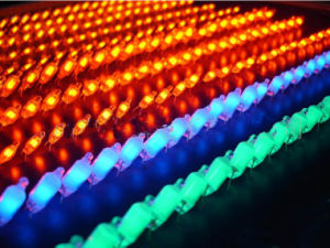 Green Neon Lamp / Neon Light (NE-2G) pictures & photos
