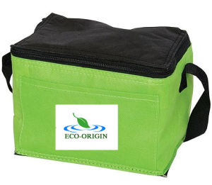 Non Woven Cooler / Lunch Bag (EOB-18)