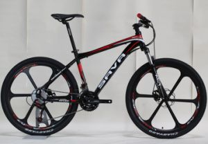 Aluminum Wheel Alloy Frame Mountain Bicycle (FP-MTB-A001) pictures & photos