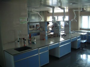 Laboratory Furniture with Reagent Shelf, Lab Side Bench