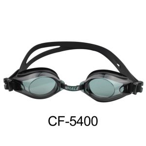 Blacked out Goggles (CF-5400) pictures & photos
