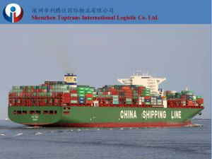 Sea Freight From China to Peru