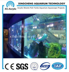 Transparent Acrylic Fish Tank of Marine Aquarium pictures & photos