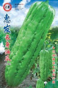 Hui Fa Oil-Rind Bitter Gourd Seeds (Z190)