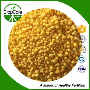 Calcium Ammonium Nitrate Water Soluble Fertilizer pictures & photos