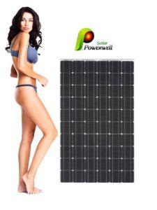 250W Solar Module,Solar Panel (BW-SM 250M 60)