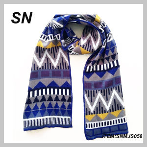 New Style Winter Kint Scarf Acrylic Scarf Wholesale 2014 (2SNMJS058) pictures & photos