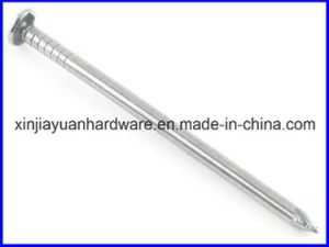 Polished and Galvanized Common Iron Nail pictures & photos