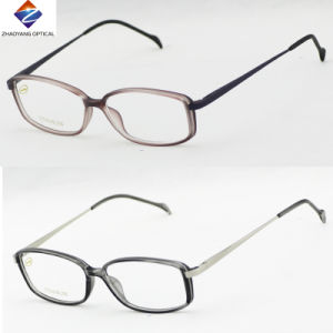 New Coming Tr90 Optical Frame with Metal Temple