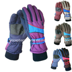 Outdoor Sports Bicycle Cycling Gloves / Biking Gloves pictures & photos