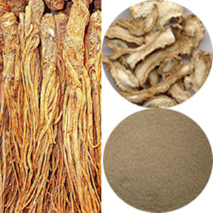 Angelica P. E. /Ligustilide&Polysaccharide (FH-C-055) pictures & photos