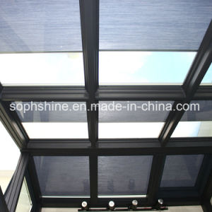 Motorized Honeycomb Shades Between Insulated Glass for Shading or Partition pictures & photos