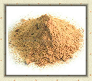 Nutricorn Lysine-HCl Feed Additiveraw Material pictures & photos
