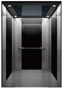 Cheap Price for High Quality Passenger Elevator pictures & photos