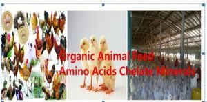 Cobalt Amino Acids Chelated Organic Feed Additive pictures & photos