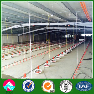 Commercial Chicken House china professional design light steel structure poultry commercial