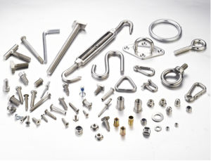 All Kinds Fastener in Different Design and Material Available pictures & photos