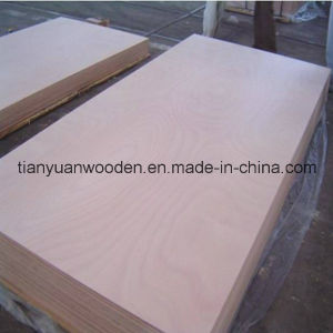 25mm Okoume, Maple, Bintangor Poplar Faced Furniture Plywood pictures & photos