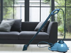 Big Water Tank 1000 Ml Steam Cleaner pictures & photos