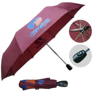Luxury Branded Design Automatic Foldable Travel Umbrella pictures & photos