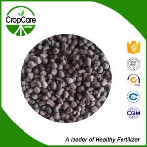 Amino Acid Organic Fertilizer Raw Material pictures & photos
