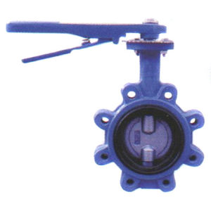 Lug Type Double Axis Butterfly Valve with Gear Operator with Blue Color pictures & photos