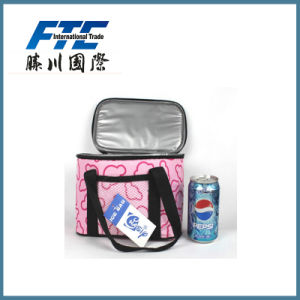 Promotional Insulated Cooler Bag for Picnic with UR Logo pictures & photos