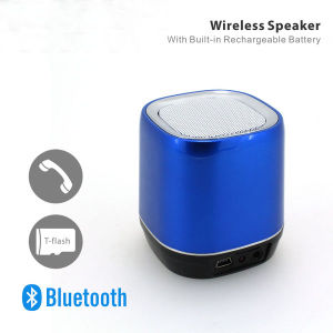Wireless Speaker with 3.5 Audio Input Supported pictures & photos