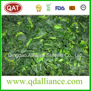 IQF Frozen Chopped Spinach with Kosher Certificate pictures & photos
