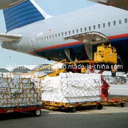 Chain, Sea & Air Freight Transportation