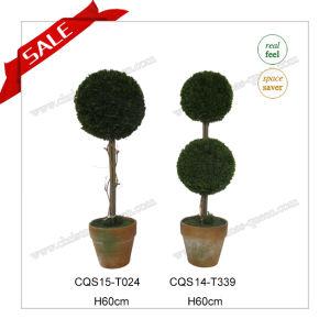 H60cm Plastic Home Decoration Artifical Plant Silk Flower pictures & photos