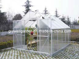 Spacious, Strong 6mm Polycarbonate Greenhouse -- SD10 pictures & photos