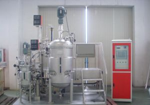 Bioreactor Stainless Steel Reactor Fermentation Tank pictures & photos