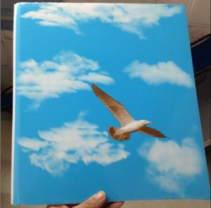Construction Material Plastic PVC Panel for Ceiling and Wall (7*200mm, groove, waterproof) pictures & photos