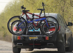 Universal Car Rear Bike Carrier (Bt RF407) pictures & photos
