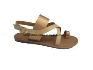 Comfortable Wholesale Women Fashion Flat Heel Sandals pictures & photos