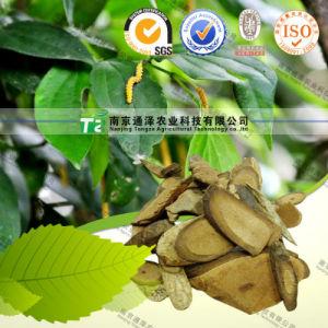 Natural Herb Medicine Kadsura Pepper Stem pictures & photos