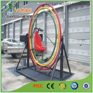 Single Outdoor Adult Gyroscope Ride for Sports pictures & photos