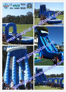 Inflatable Exciting Slide for Adults/Inflatable Screaming Slide pictures & photos