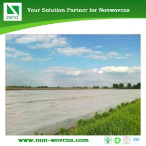 Nonwoven Fabric Used for Agriculture (Zend 01-040) pictures & photos