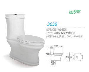 Siphon Jet One Piece Toilet 3030