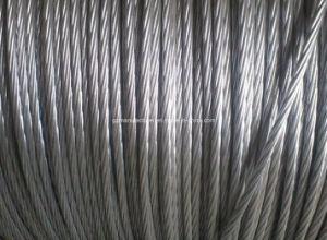 Steel Reinforced Aluminum Condutor/ACSR pictures & photos